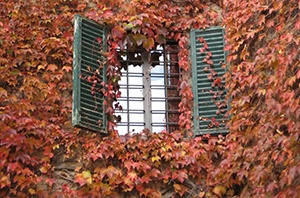 Artisans de Gironde Rénovation volets isolation thermique menuiseries PVC bois